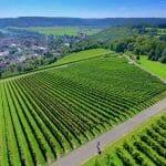 Drone field photo