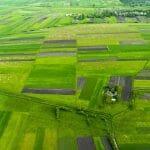 Drone farm aerial photo